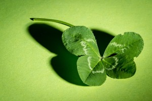 Three Tips from the Transformation Trade/Create Your Own Four Leaf Clover